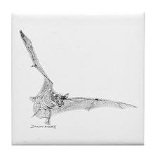 Free Tailed Bat Tile Coaster