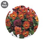 Red Pansies 3.5