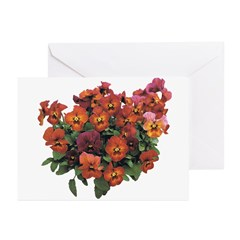 Red Pansies Greeting Cards (Pk of 20)