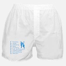 F R E N C H I E S blue Boxer Shorts