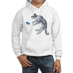 Disc Dog Missed It Hooded Sweatshirt