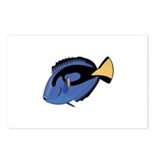 Single Blue Tang Postcards (Package of 8)
