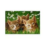 Daisy Kittens Magnet