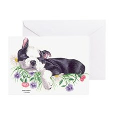 Boston Terrier Puppy Greeting Cards (Pk of 10)