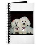 TWO PEAS IN A POD JOURNAL