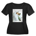 Rufous Hummingbirds Women's Plus Size Scoop Neck D