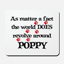 The World Revolves Around Pop Mousepad