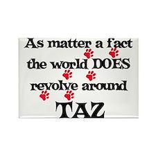The World Revolves Around Taz Rectangle Magnet