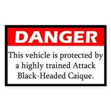 Danger Attack Black Headed Caique Decal