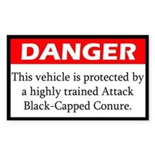 Danger Attack Black Capped Conure Decal