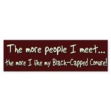 More People Black-Capped Conure Bumper Bumper Sticker