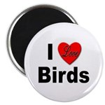 I Love Birds for Bird Lovers Magnet