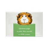 Guinea pigs 10 Pack