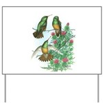 Buff-bellied Hummingbirds Yard Sign