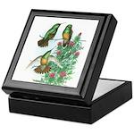Buff-bellied Hummingbirds Keepsake Box