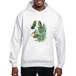 Buff-bellied Hummingbirds Hooded Sweatshirt