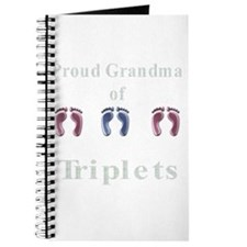 proud grandma of triplets Journal