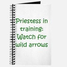 Priestess Training Arrows Gre Journal