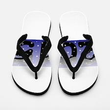 2015 in the Snow Blue Flip Flops