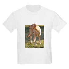 T-Shirt with yellow lab