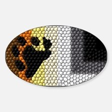 MOSAIC BEAR PRIDE FLAG DESIGN Oval Decal