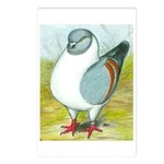 Gazzi Modena Pigeon Postcards (Package of 8)