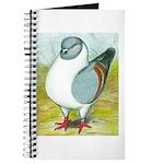 Gazzi Modena Pigeon Journal