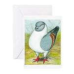 Gazzi Modena Pigeon Greeting Cards (Pk of 10)