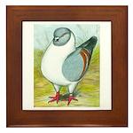 Gazzi Modena Pigeon Framed Tile