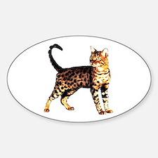 Bengal Cat: Raja Oval Decal