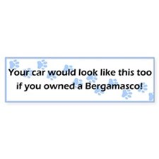 Your Car Bergamasco Bumper Bumper Sticker