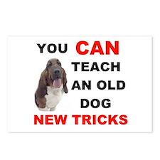 OLD DOG Postcards (Package of 8)