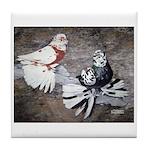 Champion Trumpeter Pigeons Tile Coaster