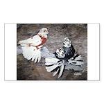 Champion Trumpeter Pigeons Rectangle Sticker