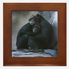 Companionship Framed Tile