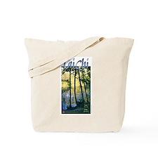 Tai Chi Principles: Root/Flow<br>Tote Bag