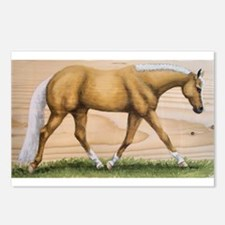 Palomino, Mare Postcards (Package of 8)