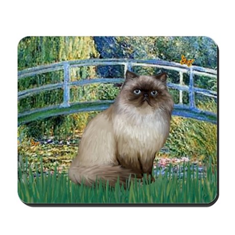 Bridge / Himalayan Mousepad