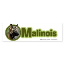 Malinois Bumper Bumper Sticker