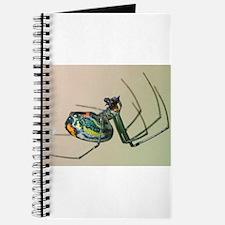 Orchard Spider Journal