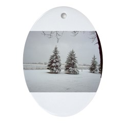 Snow on Trees Oval Ornament