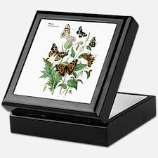 Butterfly 17 Keepsake Box
