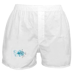 Signal to Noise - Light Boxer Shorts