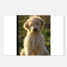 Cute Golden doodles Postcards (Package of 8)