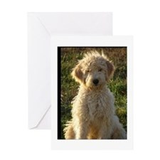 doodle Greeting Cards