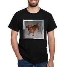 Darling Doxie T-Shirt