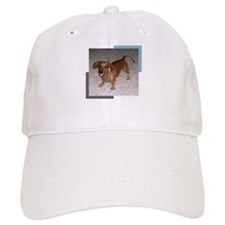 Darling Doxie Baseball Cap