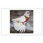 Pageant Champion Pigeon Large Poster