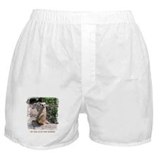 I'M TOO CUTE FOR WORDS Boxer Shorts