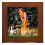 MidEve Sheltie (S) Framed Tile